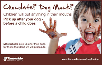 Dog Fouling Poster - Don't turn your back on dog fouling