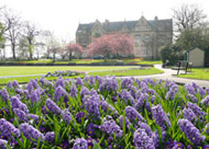 Ryecroft Hall, Audenshaw, Spring 2009