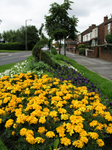 Gardenfold Way, Droylsden, Summer 2008