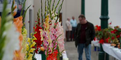 Tameside Horticultural Show