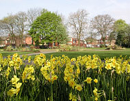 Thornley Park, Denton, Spring 2009