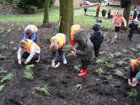 Pupils from Milton St John Primary, Mossley, planting snowdrops