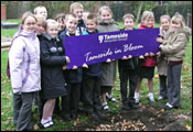 Picture of Moorside Primary School - bulb planting