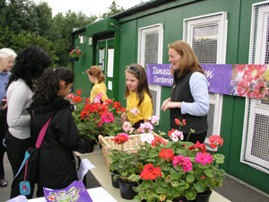 Holden Clough Primary, Ashton, Plant Sale