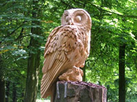 Tawny Owl sculpture, Cheetham Park, Stalybridge