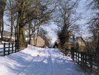 a photograph of a snow covered lane at Hollingworth farm