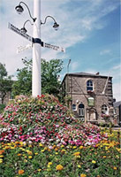 photograph of Old signpost and flowers in Mottram with the Court House in the background - copyright Aidan O'Rourke August 1999