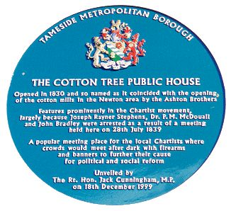 The Cotton Tree, Blue Plaque