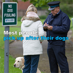 Most people pick up after their dogs