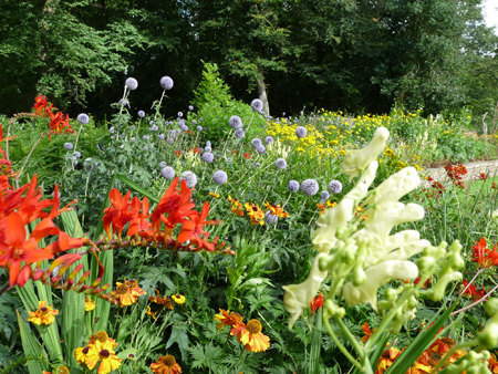 The raised herbaceous border