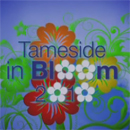 A still from the 2010 Tameside In Bloom DVD