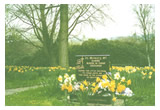 Memorial Garden for Babies at Dukinfield Cemetery